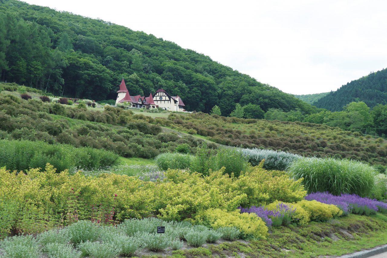 滝上町,カフェ,デザイン,過疎地,暮らし,牧場